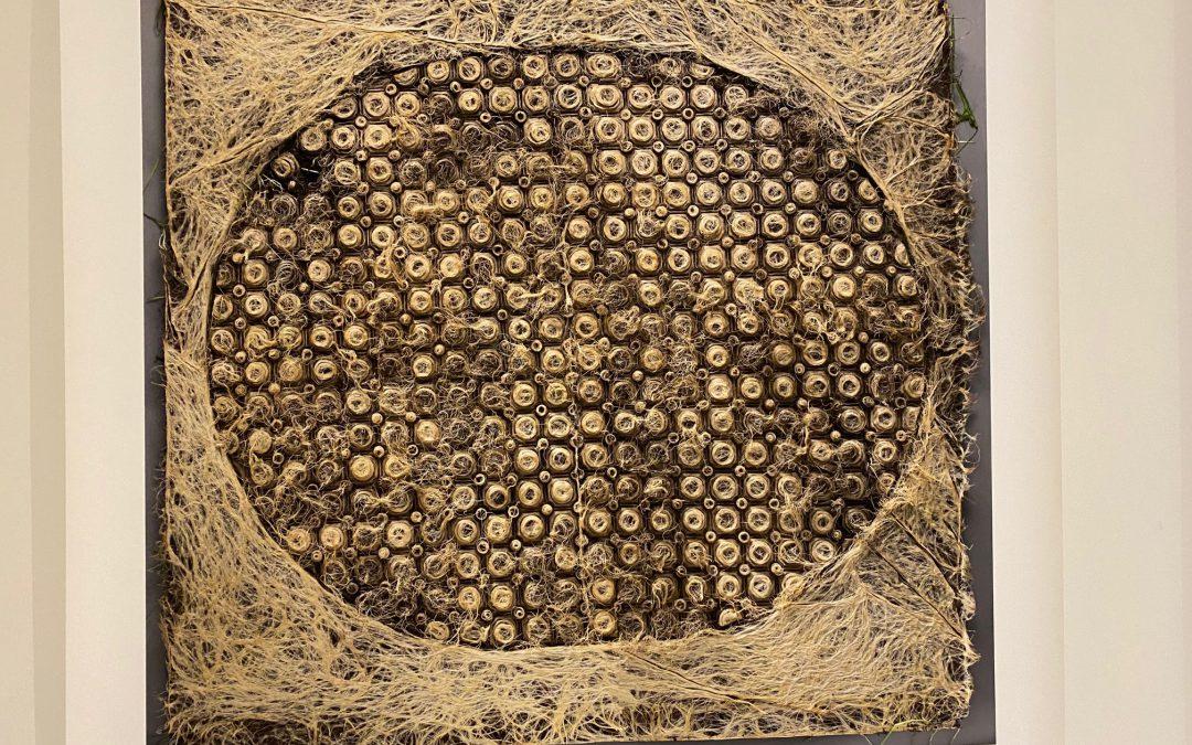 Diana Scherers kunstwerken van levend textiel