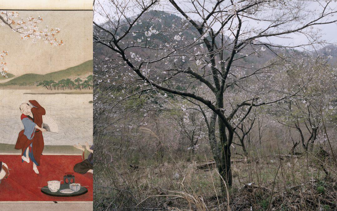 Tree and Soil: landschap verbeeld door 'archeologen van de toekomst'